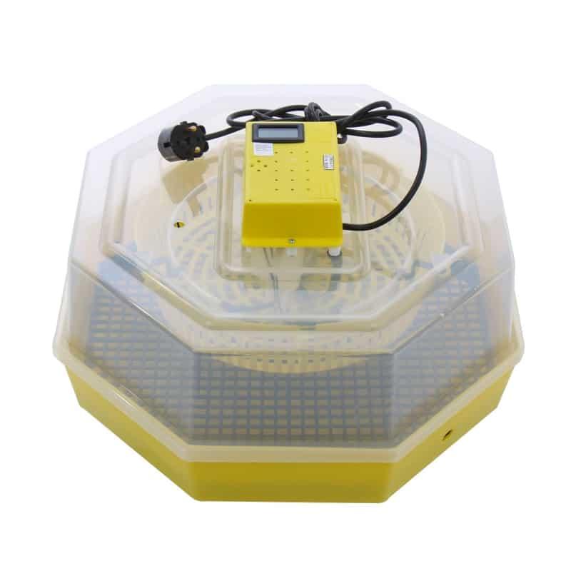 Incubator electric pentru oua Cleo 5T, termometru